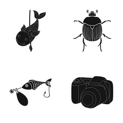 photography, video, ecology and other web icon in black style.tackle, accessories, camera icons in set collection.