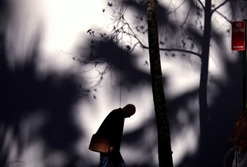 A tree casts a shadow on a wall behind on a man walking along a footpath on a winter day in central Sydney, Australia