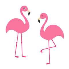Two pink flamingo set. Exotic tropical bird with eyes. Zoo animal kids collection. Cute cartoon character. Decoration element. Flat design. White background. Isolated.