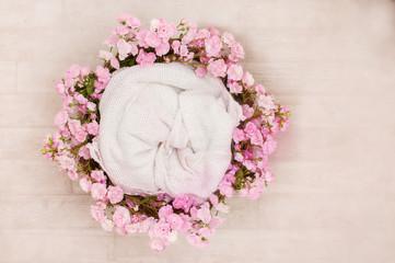 digital backdrop for newbornphotographers
