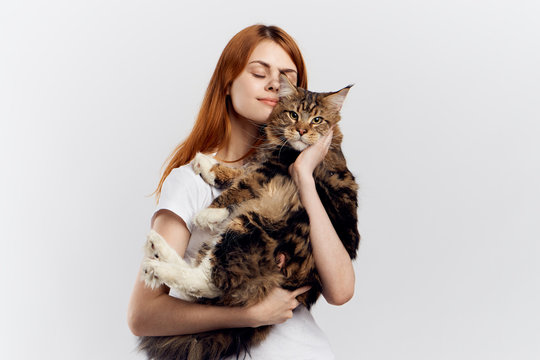 Beautiful young woman on a light background holds a cat