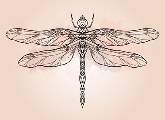 Black and white dragonfly illustration with boho pattern and watercolor splash. Vector element for sketching tattoos, printing on T-shirts, postcards and your creativity