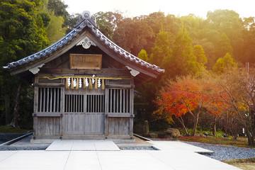 The landscape of the precinct in a shrine/Japan Fukuoka-ken Asakura-city with tree and sunrise background Wall mural