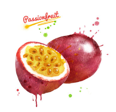 Watercolor illustration of passionfruit