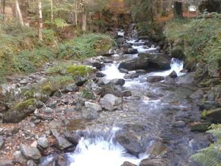 Rivière - Ariège
