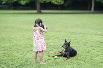 ドーベルマンの写真を撮る女の子