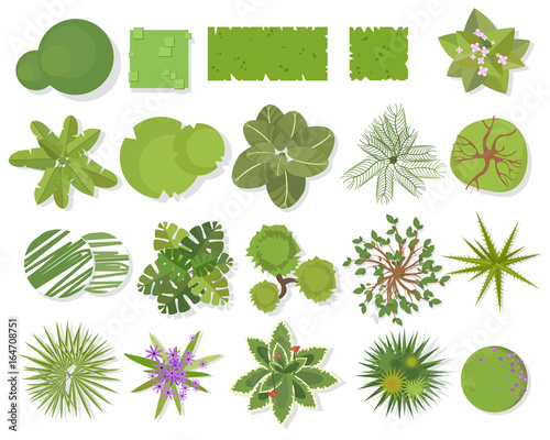 Trees top view different trees plants vector set for for Landscape design icons