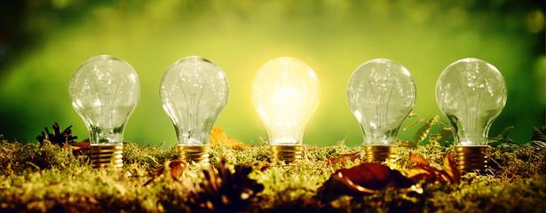 Glowing eco friendly electric light bulb