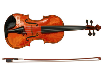 Violin detailed sketch, colored. VECTOR illustration