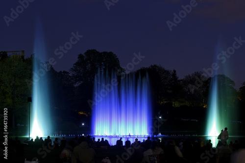 Wasserlichtspiele Planten Un Blomen Park Hamburg Deutschland