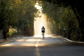 horizontal photo of a female cyclist riding a road bike during sunset in the forest vanishing in the sunlight