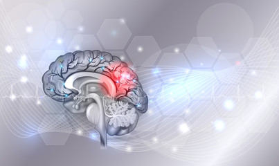 Human brain problems light grey glowing background, beautiful bright illustration detailed anatomy