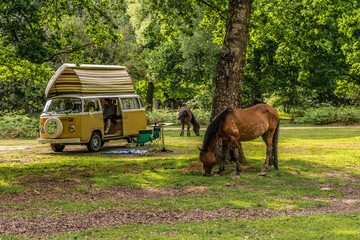 New Forset VW Camper Holiday