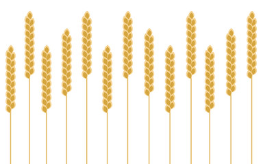 Background wheat cereal, vector
