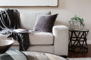 Inviting comfortable sofa with throw rug and magazine