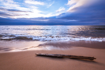 Tranquil Sea with Driftwood. Gentle wave motion on a bright sandy beach. Seascape background.