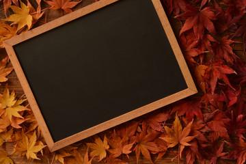 モミジの紅葉 黒板