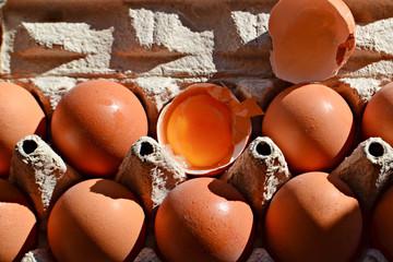 Eggs in carton whit egg yolk