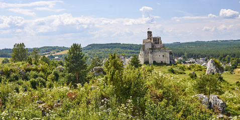 Ruins of the castle in Mirow (Poland)