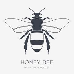 Bee Vector Logo. Business Icon for Your Company. Monochrome Illustration
