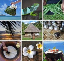 Travel Fiji postcard
