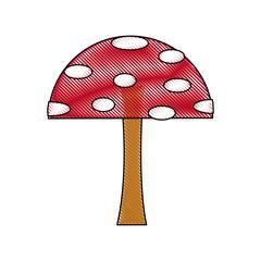 cartoon mushroom educational game for kids vector illustration