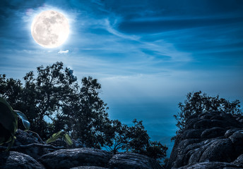 Wall Mural - Landscape of rock against blue sky and full moon above wilderness area in forest.