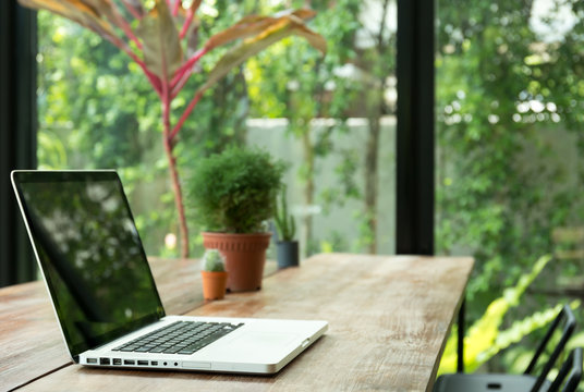 Blank laptop screen and plant on wooden