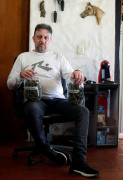 Home grower Charly poses with jars containing marijuana buds in his house in Montevideo
