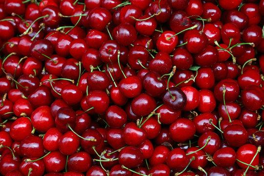 Fresh red cherries on retail market close up