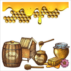 Hand drawn ink sketch illustration, set of honey, organic nature products. Vector