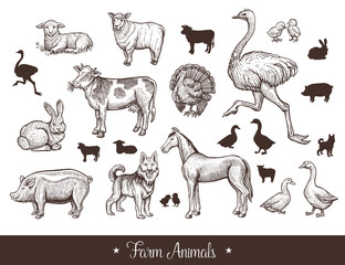 Farm animals handdrawn vintage set with cow, sheep, pig, horse, ostrich, guard dog, duck, rabbit, goose, turkey, lamb, pork. Thin line sketch and silhouettes. Vector illustration