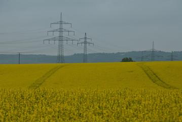 Strommast im Rapsfeld