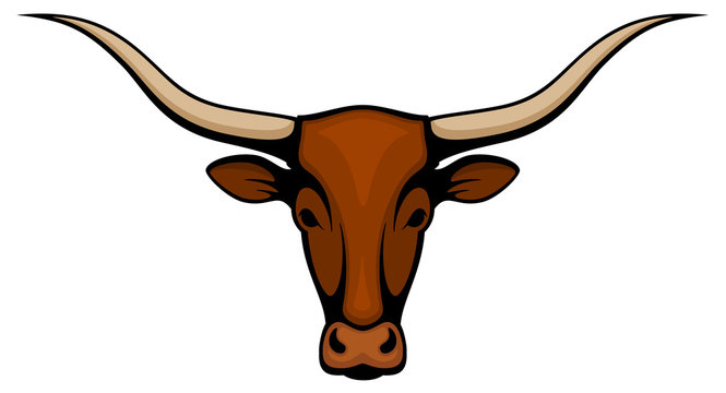 Vector illustration of the head of a longhorn steer.