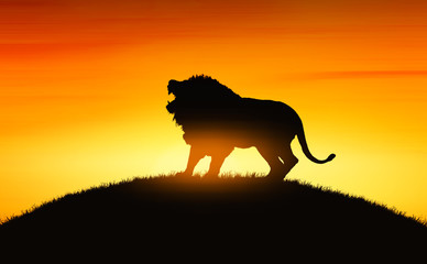 African landscape with animal lion silhouette