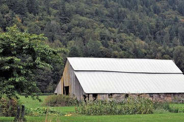 Barn in Skagit County, Washington