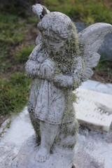 Cemetery angel 4