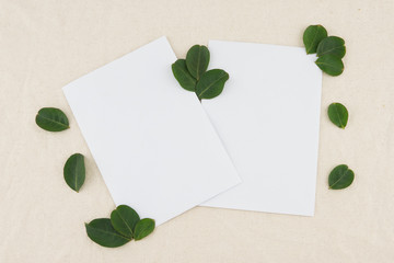 Two blank white cards decorated with green leaves