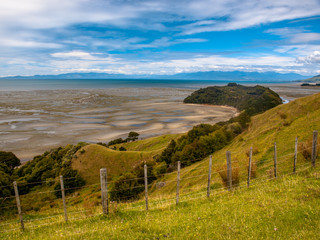 Wall Mural - View over Grassland with Flowers at Puponga bay, South Island, New Zealand