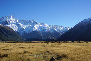 Beautiful landscape of the meadow along the road in New Zealand