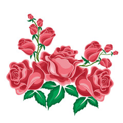 Pink roses in cartoon style