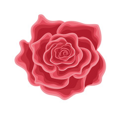 A flower of a red rose in cartoon style
