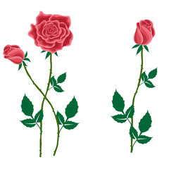 Flower of a red rose with buds in cartoon style