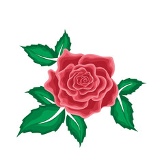 Red rose in leaves in cartoon style
