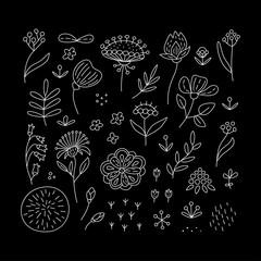 Hand drawn floral elements set