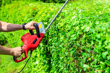 mowing hedges