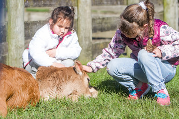 young kids taking care of animals on a farm