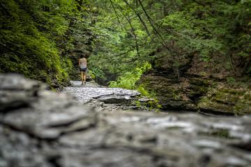 De excursión / Walking in nature