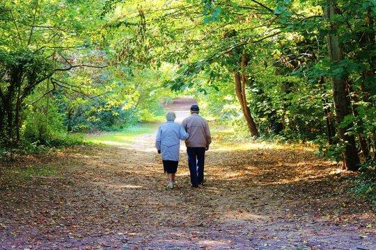 Vieux amoureux dans la forêt