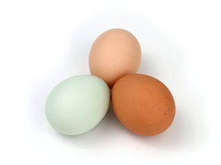 Three Multicolored Organic Free Range Chicken Eggs